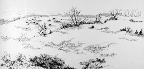 Landscape with Hills Kansas